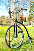 Retro, Old Style Bicycle In The Sunny Spring Green Park.