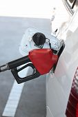 Red Fuel Nozzle In Pouring To Car.