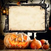 Concept of halloween pumpkins and empty wooden board for sample text