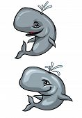 Funny Whales