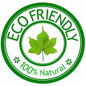 Green Leave And Eco Friendly Wording.