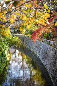 Kyoto, Japan at Philosopher's Path in the autumn.