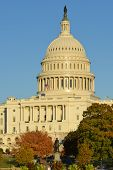 The Capitol in Autumn - Washington D.C. United States of America