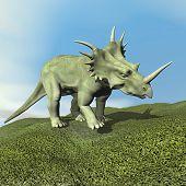 Styracosaurus dinosaur - 3D render