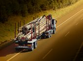 picture of logging truck  - Logging truck on the highway - JPG