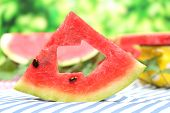 Fresh slices of watermelon on table, on nature background