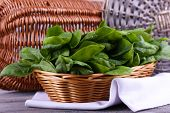 Fresh sorrel in round wicker basket on napkin on wooden background