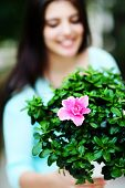Closeup portrait of a woman holding flower in a pot. Focus on flowers