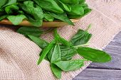 Tuft of fresh sorrel in wooden plate on piece of sacking on wooden background