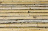 Ancient Bamboo Texture
