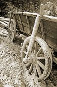 Historic Hay Cart, Covered With Ice Needles