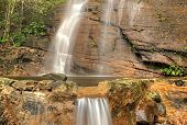 pic of budge  - Location : Sri Lanka - Hunnasgiriya