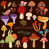 Bright Different Types Of Mushrooms  Set In Vector. Tasty Card In Cartoon Style On Brown Background