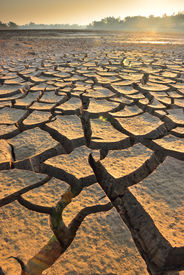 picture of water shortage  - dry cracks in the land, serious water shortages ** Note: Soft Focus at 100%, best at smaller sizes - JPG