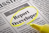 Report Developer Vacancy in Newspaper.