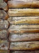 Part Of The Old Dilapidated Log Cabin.