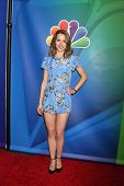 LOS ANGELES - DEC 16:  Bridget Mendler at the NBCUniversal TCA Press Tour at the Huntington Langham Hotel on December 16, 2015 in Pasadena, CA