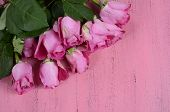 Pink Roses On Pink Wood Background With Copy Space For Your Text Here.
