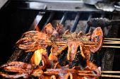 Squid Roasted On The Charcoal Brazier