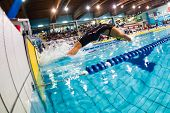 Milan - December  23:  Veronica Neri   (italy)  Performing Backstroke  In  Swimming Meeting Brema Cu