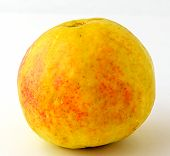 yellow guava fruit