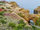 stock photo of grotto  - The grotto is a sinkhole geological formation in Victoria in Australia - JPG