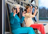 picture of chest hair  - Side View of Serious Healthy Elderly Ladies in Chest Press Exercise at the Fitness Gym - JPG
