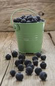Blueberries In A Green Bucket