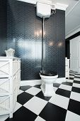 Black And White Toilet Interior
