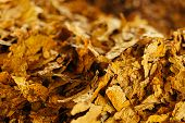 Bulk Tobacco Background