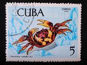 Cuba - Circa 1969: Postage Stamp Printed In Cuba Shows A Color Image Underwater Creatures Crab Earth