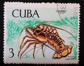 Cuba - Circa 1969: Postage Stamp Printed In Cuba Shows A Color Image Underwater Creatures Great Lobs