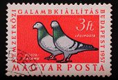 Hungari - Circa 1957: Postage Stamp Printed In Budapest Pokazyaaet Image Of Two Doves On A Red Backg