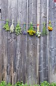 stock photo of hyssop  - fresh medical herbs flowers bunch collection on old wooden farm barn wall - JPG