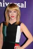 LOS ANGELES - JAN 15:  Kathy Griffin at the NBCUniversal Cable TCA Winter 2015 at a The Langham Huntington Hotel on January 15, 2015 in Pasadena, CA