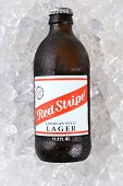 Red Stripe Jamaican Lager On Ice