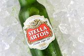 Stella Artios On Bed Of Ice Clsoeup