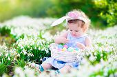 foto of bunny ears  - Adorable curly toddler girl wearing bunny ears playing with Easter eggs in a white basket sitting in a sunny garden with first white spring flowers - JPG
