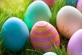 Sunny Easter Eggs Which Are Colorful And Many On Green Grass