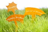Three Labels With Happy Easter On Green Grass