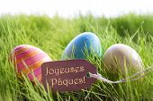 Happy Easter Background With Colorful Eggs And Label With French Text Joyeuses Paques