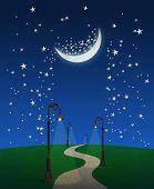 Fantasy Pathway At Night