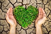 Love nature and our world