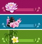 foto of frangipani  - Vector banners on spa theme with bamboo - JPG