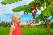 pic of banana tree  - Small smiling child exploring the nature  - JPG