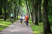 picture of bike path  - Cyclists ride along bike path in park - JPG