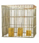 Banking  Coins In Cage On White