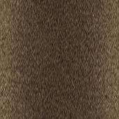 stock photo of jungle animal  - Seamless animal fur background - JPG