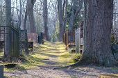 foto of cemetery  - Vanishing footpath and fences at old cemetery - JPG