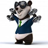 pic of pandas  - Fun panda - JPG